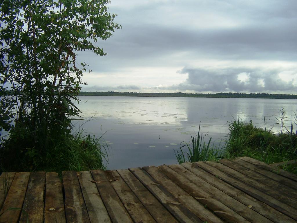 Вид на озеро Большое Засоминое